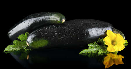 outspreading: Closeup shot of two dewed courgettes with flowers on black background