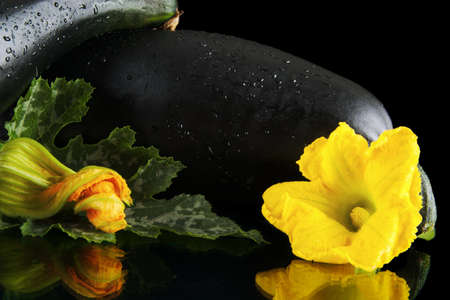 outspread: Cropped view of two wet courgettes with flowers on black background Stock Photo