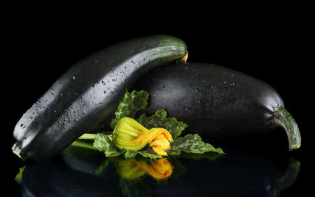 outspread: Dewed mature two courgettes with flowers on black background