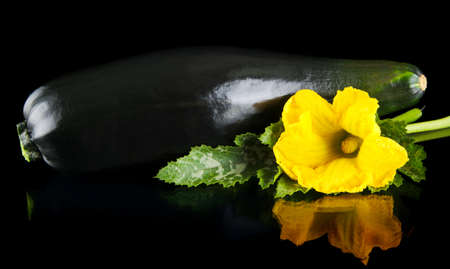 outspreading: Closeup shot of zucchini with flower and courgette leaf on black background Stock Photo