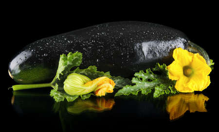 dewed: Closeup wet zucchini with flower and courgette leaf on black background