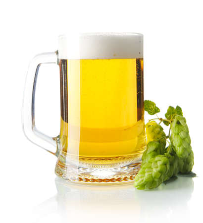 Pint of beer on table with hop cones isolated on white background