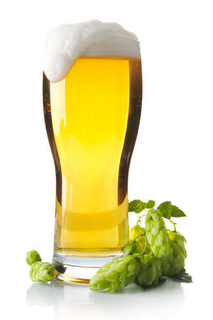 scum: Pint of beer on table with hop cones isolated on white background