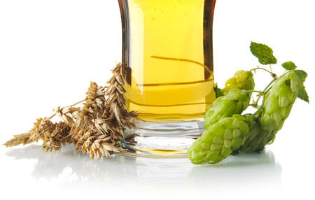 Cropped mug of beer on table with hop cones, ears of wheat isolated on white background