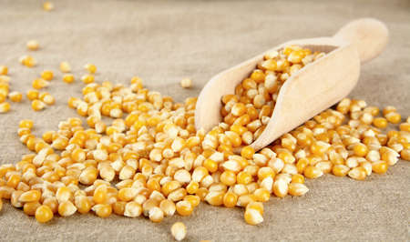 Diffused dried corn with spoon on wooden plank Stock Photo