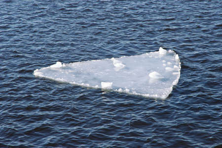 floe: Thin ice floe in springtime