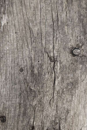Old wood texture closeup. Weathered wood background Reklamní fotografie