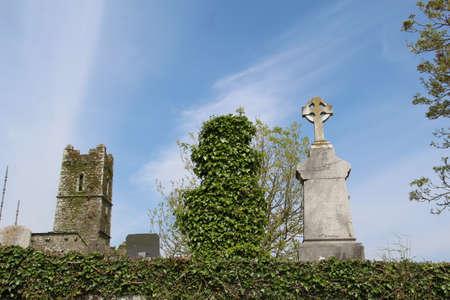 Albero di fronte, croce celtica con rovina di un vecchio abbazia paesaggio verde d'Irlanda sullo sfondo Ubicazione West Cork Timoleague Abbey Archivio Fotografico - 73679714