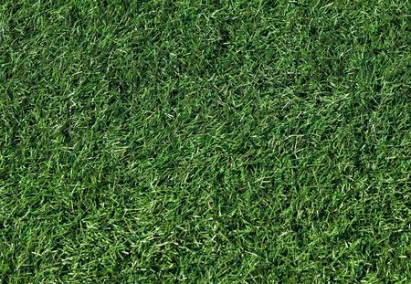 Artifical grass on a new football field photo