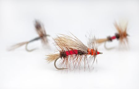 popular: Popular dry flies for trout