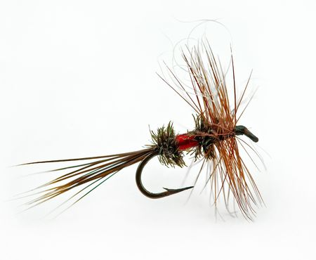 Famous dry fly called a Royal Wulff