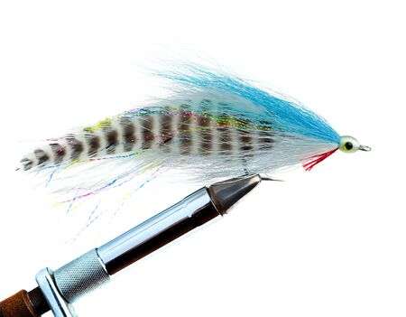 An Imitation Minnow for Saltwater Fly Fishing