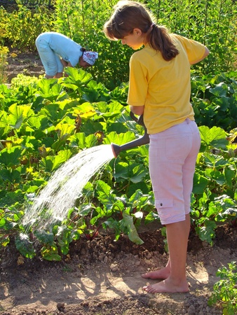 girl watering vegetable bed at the rural farm