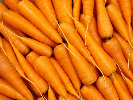 some fresh cropped carrots as background