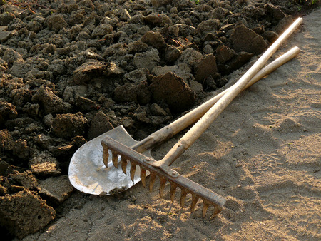 tillage: rake and spade at the edge of ploughed ground