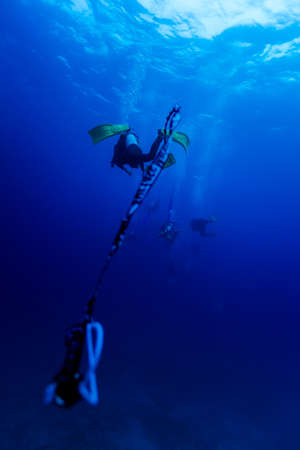 underwater scuba diving lead guiding and rescue in the deep blue ocean with rope