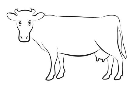 Koe geïsoleerd op wit Stock Illustratie