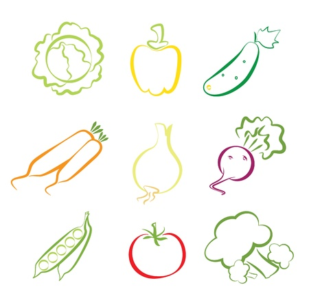 Vegetables assorted isolated on white Stock Vector - 17584681