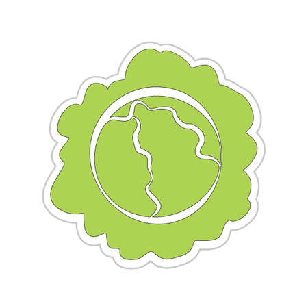 Cartoon Cabbage Sticker Stock Vector - 18543664