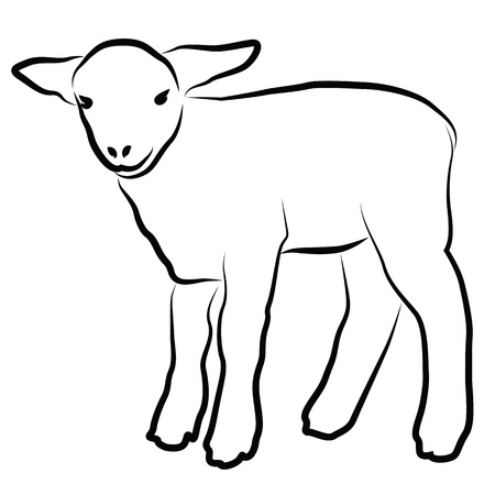 yeanling: Lamb silhouette isolated on white Illustration