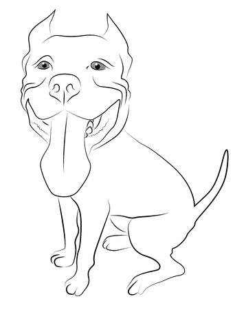 reproduce: Pitbull Terrier