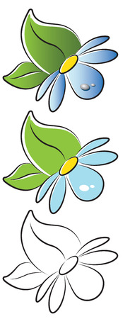 oxeye: Forget-me-not with Leaves