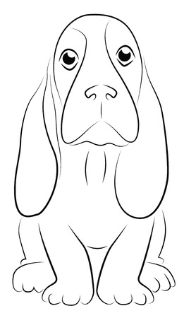 Basset Puppy Simplified Contour Representation