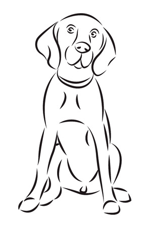 Sketch of a dog isolated on white