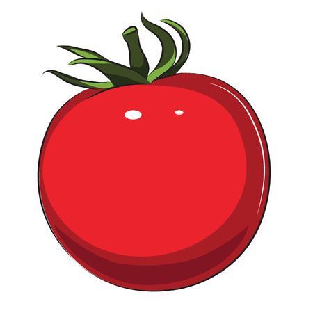 新鮮なトマトを白で隔離