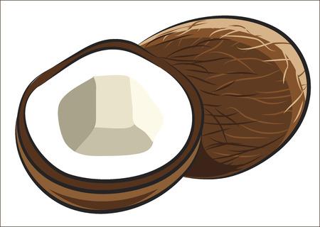 ココナッツの果実を白で隔離