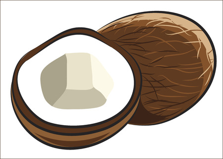 coconut fruit: Coconut Fruit isolated on white