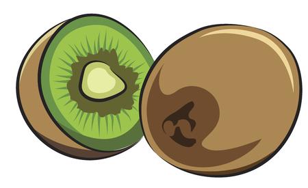 kiwi fruta: Fruto de Kiwi aislado en blanco
