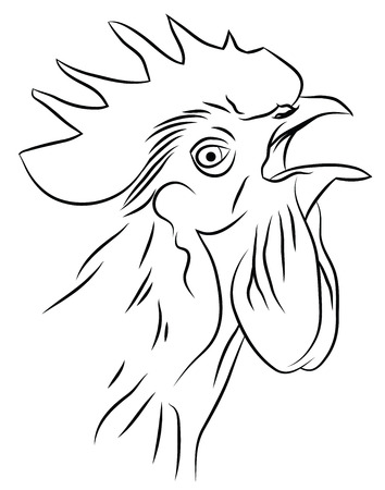 crowing: Sketch of a Crowing Rooster isolated on white Illustration