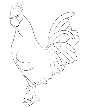 Sketch of a Cock isolated on white Vector