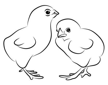 2 つの小さな雛を白で隔離されます。  イラスト・ベクター素材