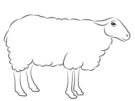 白で隔離羊のスケッチ  イラスト・ベクター素材