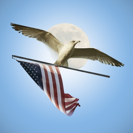 Flying with USA Flag photo