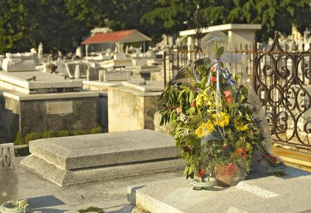 burial: Flowers on a Cemetery Tomb