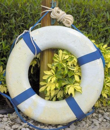 lifesaver: Pool Lifesaver on Duty