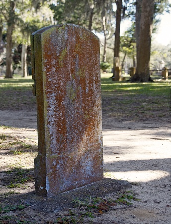 Tombstone in a Graveyard on a Sunny Day photo