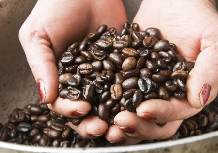 Woman Hands Holding Coffee Beans photo