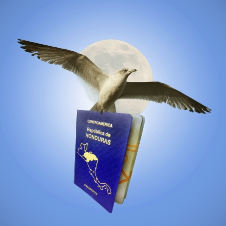 Flying With Honduran Passport photo