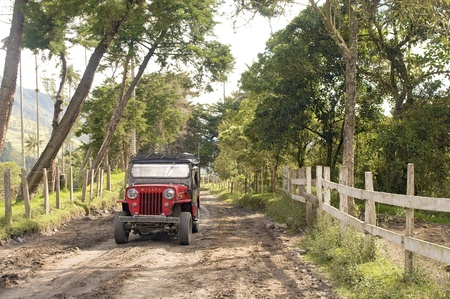 willy: COCORA VALLEY, COLOMBIA - JUNE 17: Willy Jeep riding on a dirt road crossing by the valley giant palms trees, on June 17, 2012 in Cocora Valley, Colombia. Cocora has the tallest palm trees in the world. Editorial