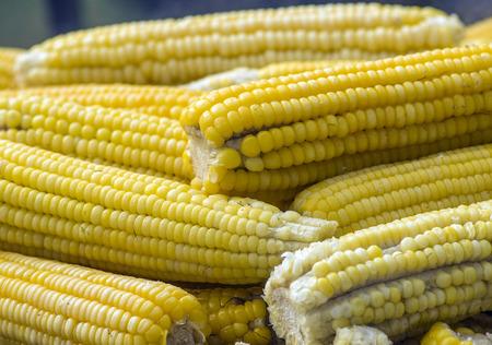 Prepared Street Corn Ready to Eat Banco de Imagens - 26566452