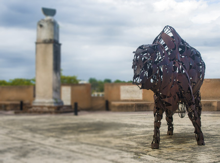 Selective Focused Iron Bull at the Colonial Zone Historic Center at Sto Domingo, Dominican Republic
