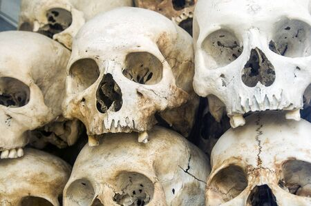 Piled up human skulls