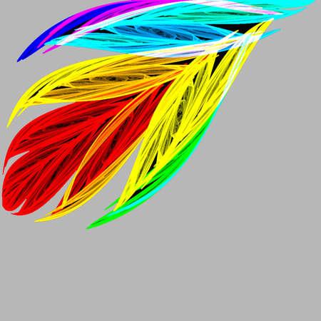 Feather Stock Photo - 240853