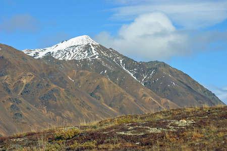 Base of Mountain Фото со стока