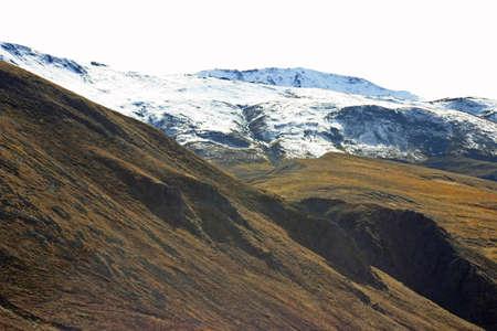 Alaska Snow Tops