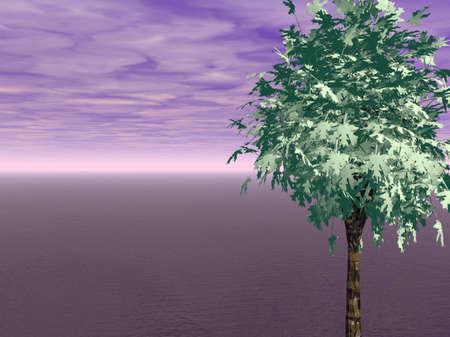 Tree and Ocean Stock Photo - 509460